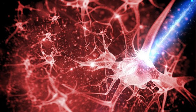 methods-for-creating-new-neural-pathways- (1)